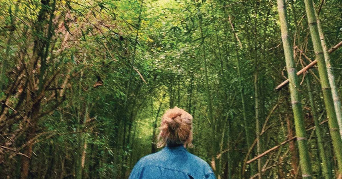 Earth Day - Bamboo Forest